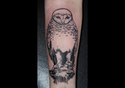 Tattoo Eule